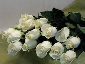 Белая роза в букете - символ нежной любви