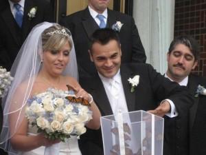 Салют из бабочек на свадьбе можно организовать двумя способами