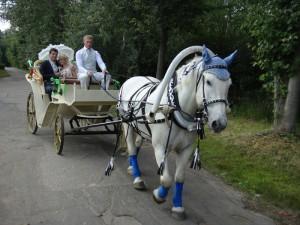 жених и невеста в карете