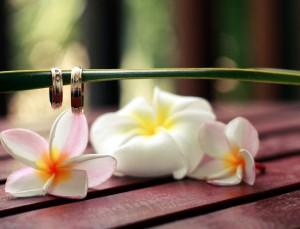 обучальные кольца и цветы