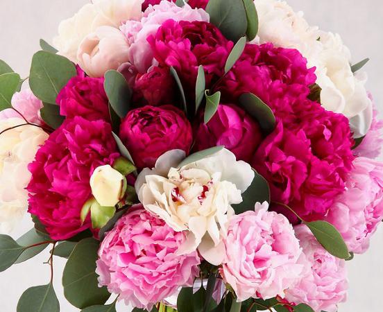 Пионы+язык цветов