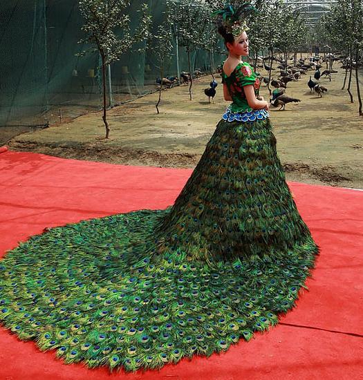 Платья для полных женщин 20 идеальных фасонов
