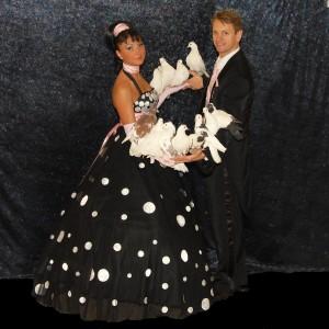 отличное шоу на свадьбу-дрессированные животные