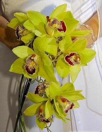 Жизнь свадебному букету из орхидей