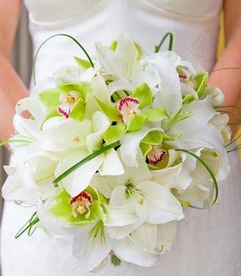 Значение цветка орхидея