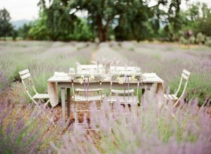 лавандовая свадьба